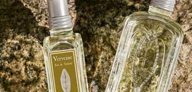 Verbena Collection